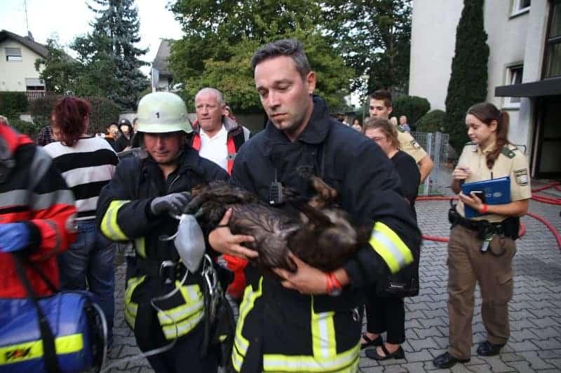 Foto: Feuerwehr Augsburg