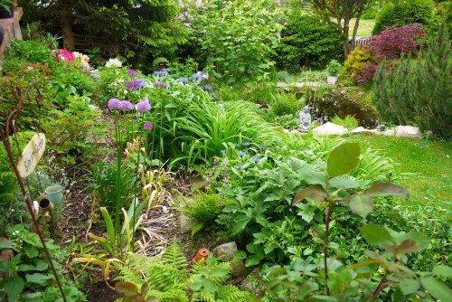 Garten - aber bitte ohne Giftpflanzen
