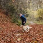studie hund geste koerpersprache verstehen deuten mensch herbst laub