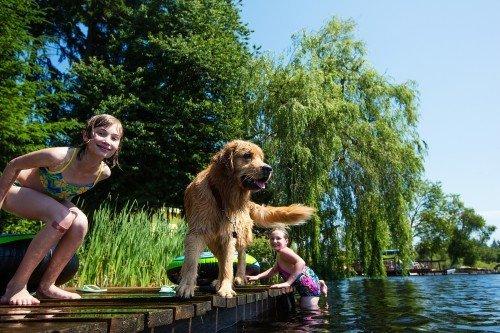 Kinder spielen mit einem Golden Retriever am See