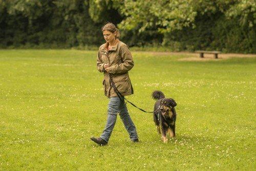 Lockere Leine Gehen: Schritt 4 - Abwenden sobald der Hund zieht © Klaus Grittner