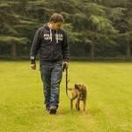 Lockere Leine gehen - Martin Rütter mit Welpe: Schritt 1