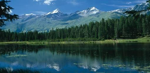 hund auf den berg wandern österreich schwarzer see tirol