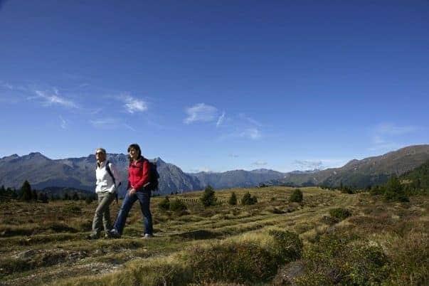 hund auf den berg wandern österreich nauders hochmoor plamort