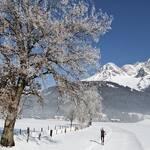 Bewegte Berge Langlauf im Winter