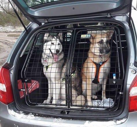 Alftaburen Hundeboxen und Gitter © Alftaburen