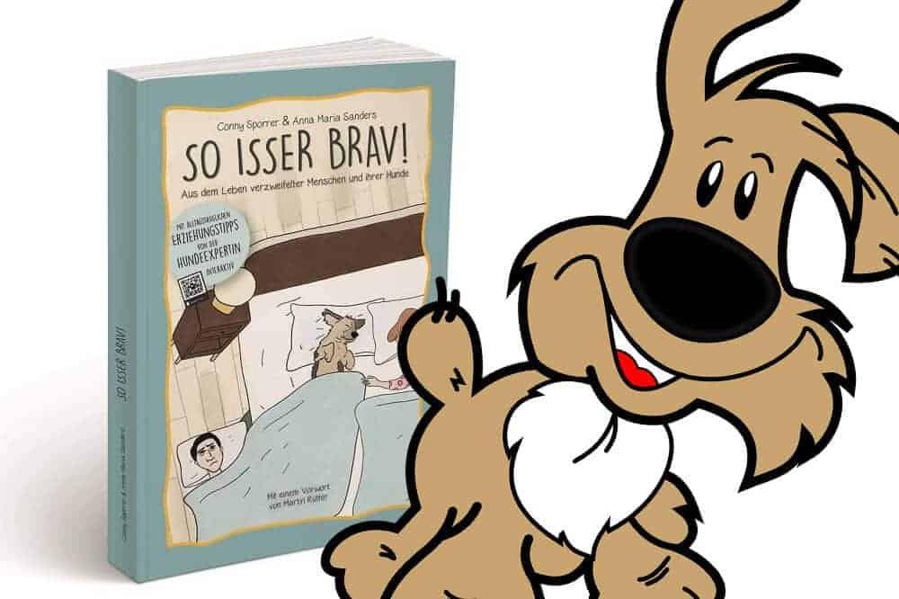Hundeerziehung So Isser Brav Buch Von Sporrer Sanders