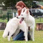 Die Ausbildung für eine Massage beim Hund gibt es bei Tiermasseur Mannsberger. Foto: Logo © Mannsberger