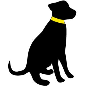 Die Hundezeitung