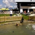 urlaub mit hund müllneralm tirol hundebad österreich