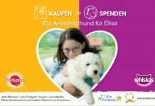 assistenzhund fuer elisa aktion pet ribbon stiftung kindertraum pedigree whiskas