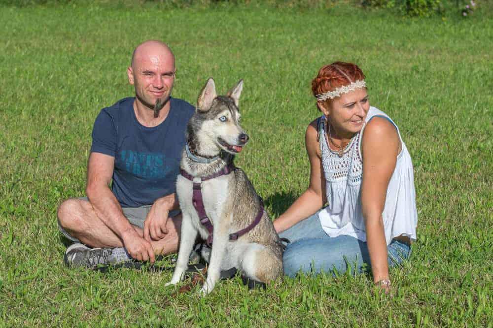 christian mayerhofer tinkabell anna canicross husky hundesport