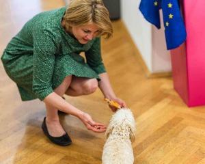 neos spitzenkandidatin beate meinl reisinger nationalratswahl 2019