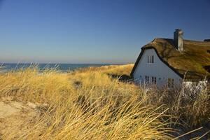 urlaub norddeutschland mit hund an die ostsee sand strand hundefreundlich duenen haus meer
