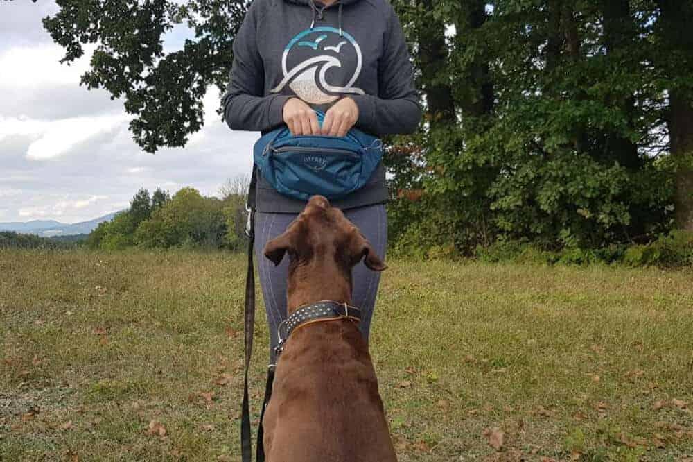 Osprey Bauchtasche Hund