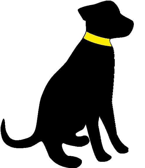 die hundezeitung online logo hund