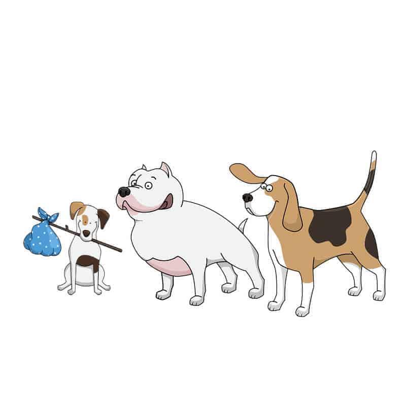 quiz koerpersprache hund fragen luft nach oben die hundezeitung
