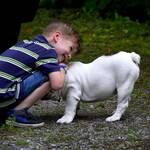begegnung mit fremden hunden richtiges verhalten kind