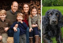 hund-prinz-william-kate-cocker-spaniel-kensington-royals-familie-kinder