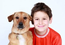 train your baby like a dog rtl kinder hund erziehung skandal