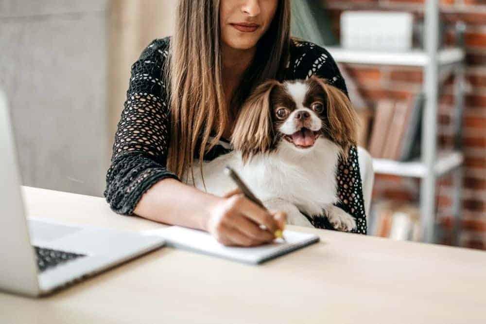 Eine dunkelhaarige Frau schreibt etwas auf einen Notizblock und hat dabei ihren Hund auf dem Schoss.