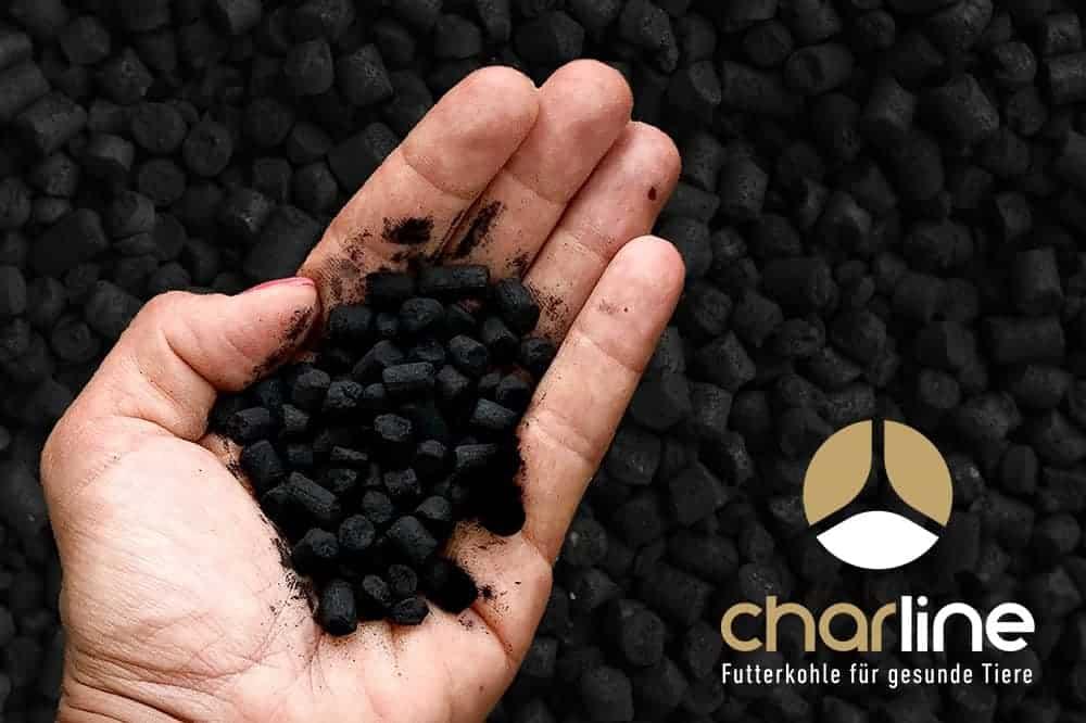 Eine Hand hält Kohlepellets und im rechten unteren Eck des Bildes ist das Logo von Charline abgebildet.